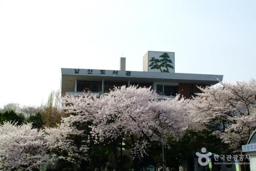 南山图书馆