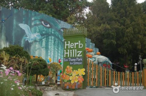 Herbhillz