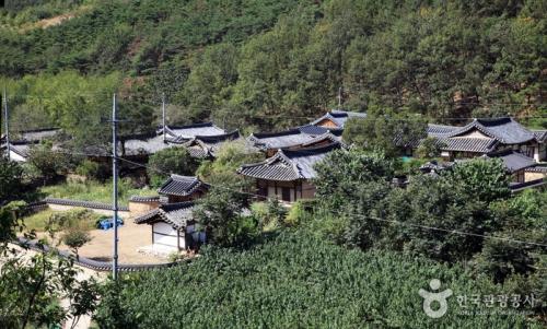 大邱漆树谷村