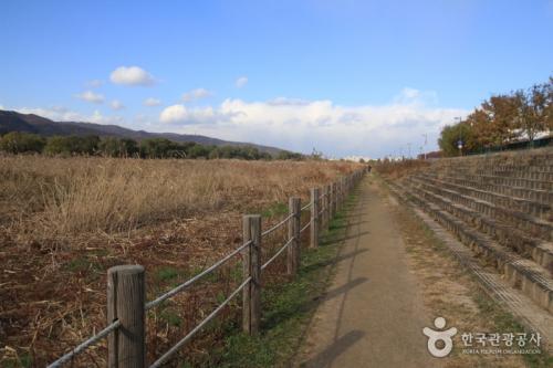 岩寺江畔生态公园