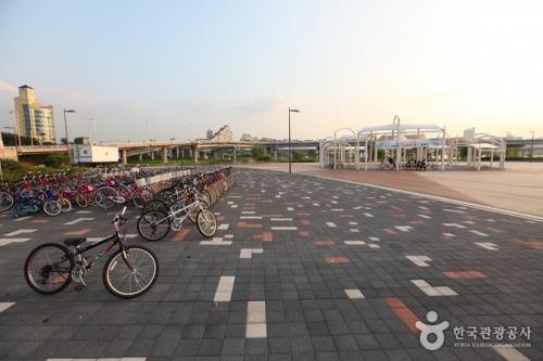 汉江市民公园广渡口地区