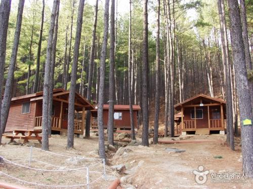白云山自然休养林
