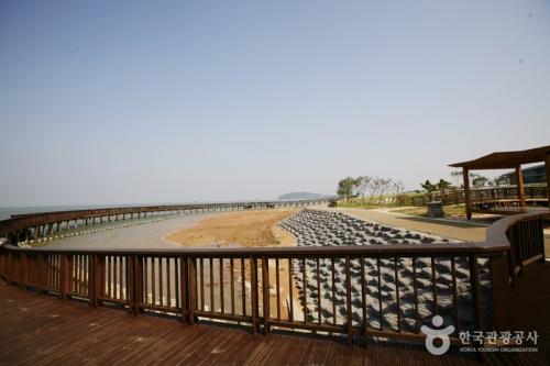 务安泥滩生态中心