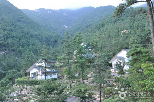 乐安民俗自然休养林