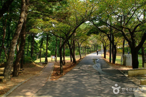 纱罗峰公园