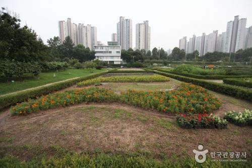 汉江市民公园-蚕室地区